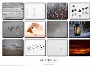 Calendar 2021 - Wellness-me_coverpg